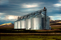 Five Silos on the Plains of the Texas Panhandle